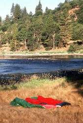 CAmping on the lower Klamath
